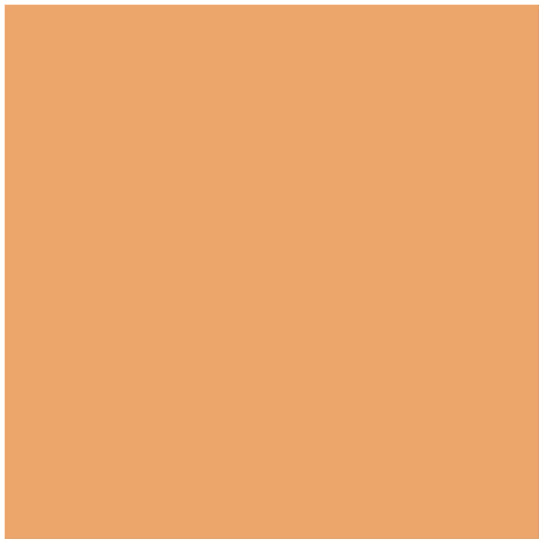 color neon orange - 480×480
